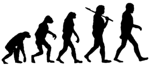 human-evolution-cx